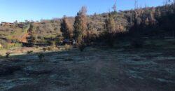 Hermosa parcela de 5.000 mt2 en Olmué
