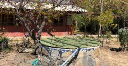 Espectacular Parcela de 1 hectárea en Caleu