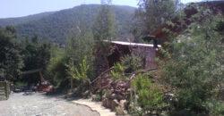 Lindas cabañas en Olmué